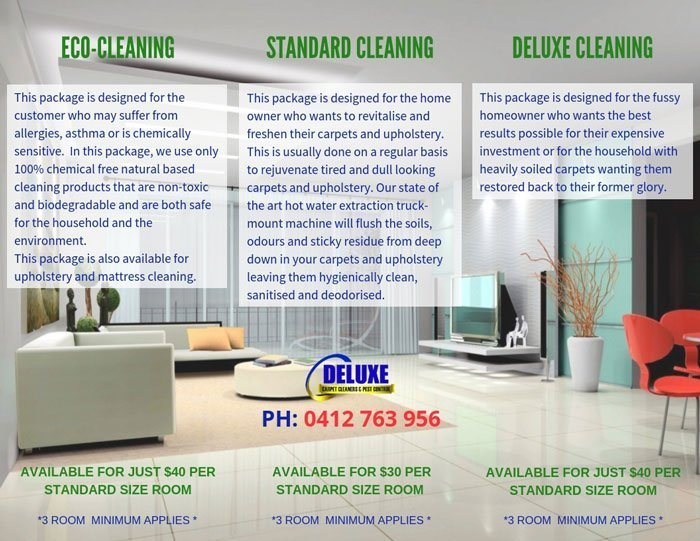 deluxe carpet cleaners brochure portfolio